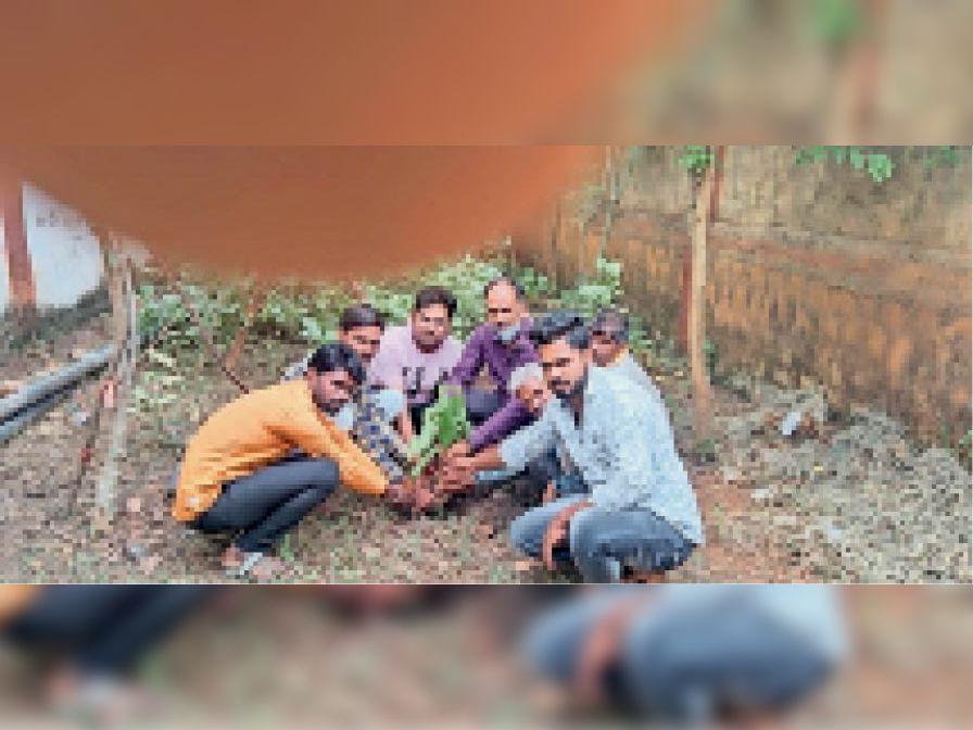 पर्यावरण संरक्षण के लिए पौधरोपण करते लोग। - Dainik Bhaskar
