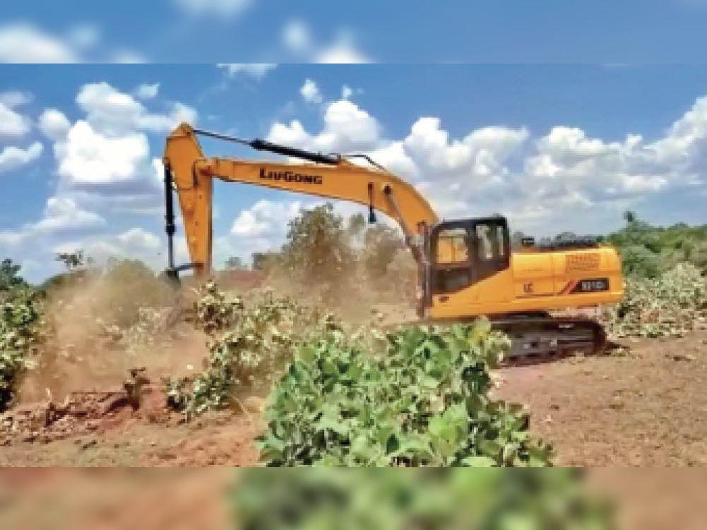 पेड़ों को नष्ट करती मशीन। - Dainik Bhaskar