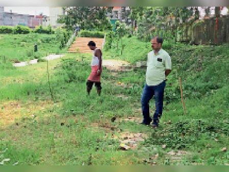 ठाकुरगंज-भातडाला पोखर में सफाई कराते वन कर्मी। - Dainik Bhaskar