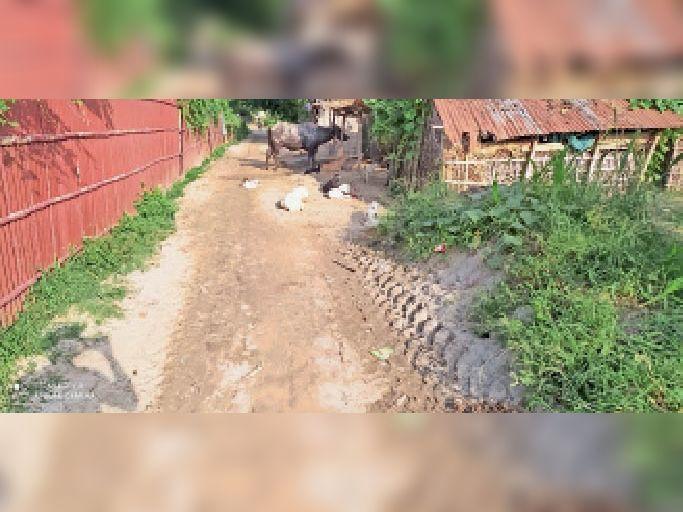 तीनकोनमा के कच्ची सड़क पर ग्रामीणों की ओर से डाली गई मिट्टी। - Dainik Bhaskar
