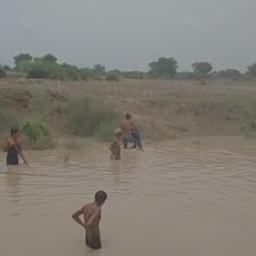 कुछ लड़के बिना बताए गांव के बाहर बने पानी के गड्ढे में नहाने गए थे, दो लड़के गहरे पानी में डूब गए|भिंड,Bhind - Dainik Bhaskar