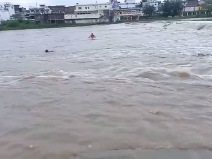 डिंडौरी में नर्मदा नदी की तेज धार में बह रहे युवक की 2 लोगों ने बचाई जान, लगातार बारिश से नदी का बढ़ रहा जलस्तर|जबलपुर,Jabalpur - Dainik Bhaskar