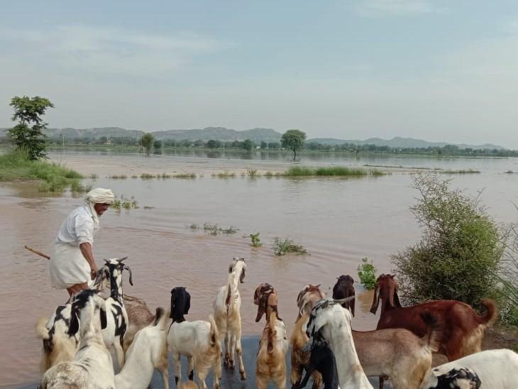 हुसैपुर का बांध टूटने के बाद खेतों में भरा पानी।