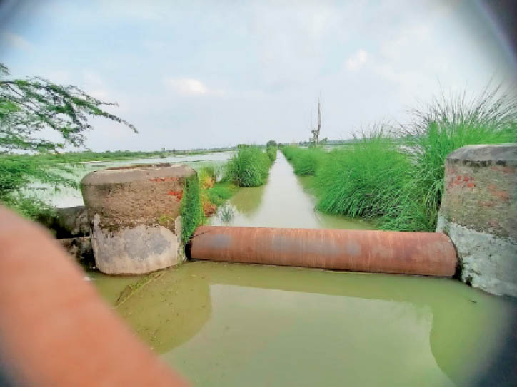 खेतों में बरसात का पानी जाने से रोकने के लिए इस तरह लगाए गए अवरोध के रूप में पाइप। - Dainik Bhaskar