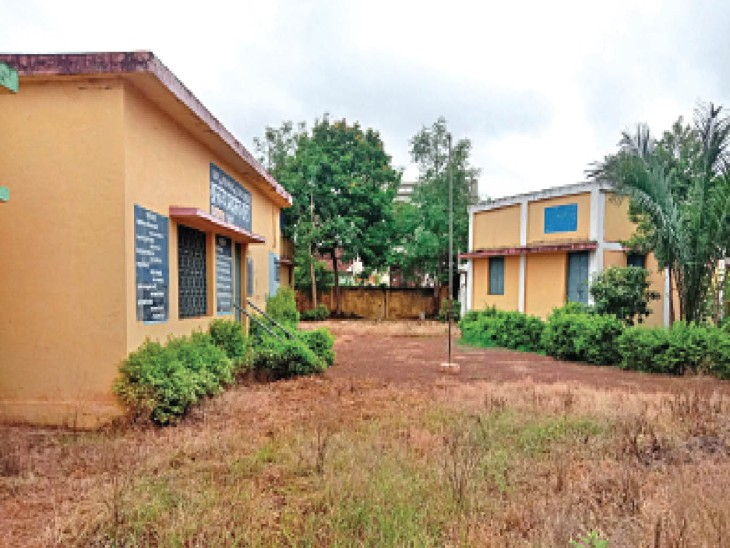 अभी स्कूल बंद है, सफाई नहीं होने से प्राथमिक शाला मेड़की के परिसर में खरपतवार उग गए हैं। - Dainik Bhaskar