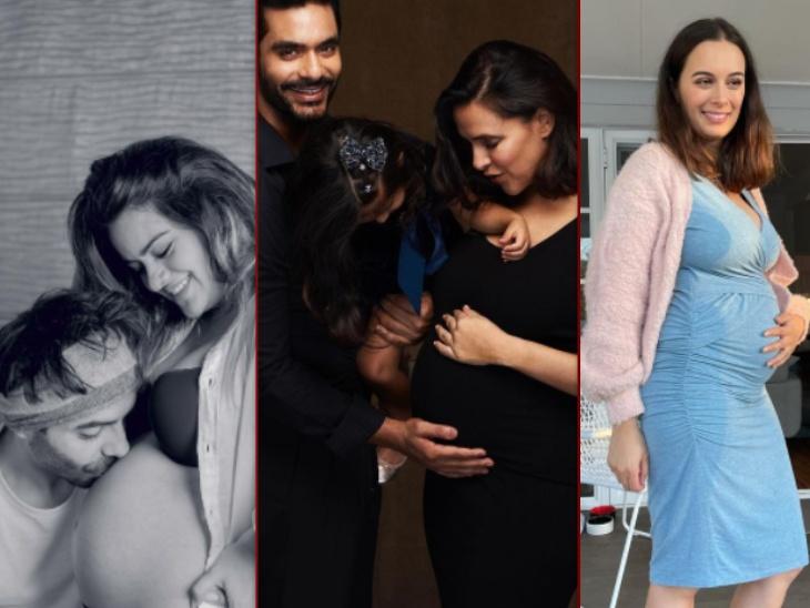 नेहा धूपिया, अपारशक्ति खुराना से लेकर एवलिन शर्मा तक, साल 2021 में इन बॉलीवुड सेलेब्स के घर आने वाले हैं नन्हें फरिश्ते|बॉलीवुड,Bollywood - Dainik Bhaskar