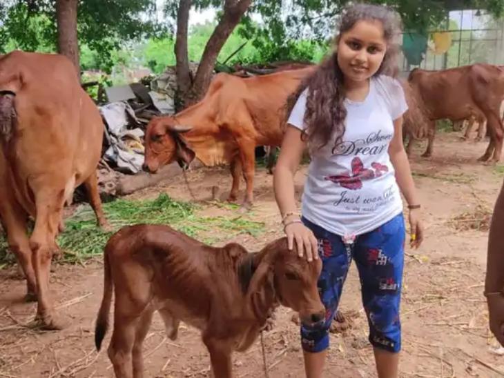 चेतन के इस काम में उनके परिवार के लोग पूरा सपोर्ट करते हैं। उनके बच्चे भी गायों के साथ वक्त बिताते हैं।