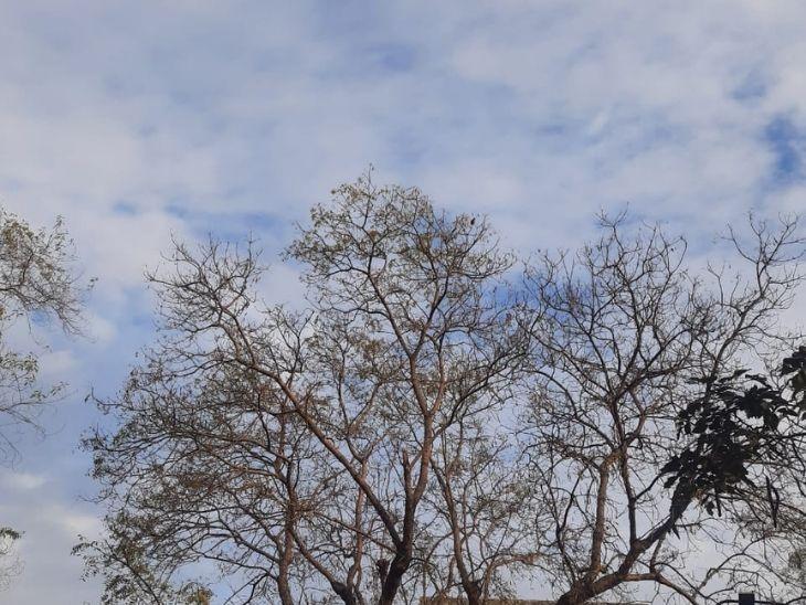 रांची में सुबह से रुक-रुक कर हो रही बारिश, रामगढ़, हजारीबाग, कोड़रमा, लातेहार में आज हो सकती है भारी बारिश रांची,Ranchi - Dainik Bhaskar