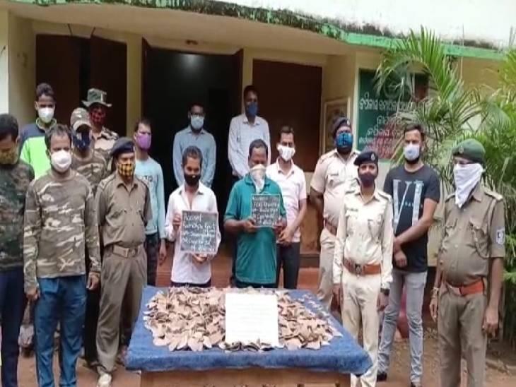 जबलपुर की WCCB टीम ने ओडिशा वन विभाग के साथ मिलकर दो तस्करों को दबोचा, आरोपियों के कब्जे से 14.2 किग्रा पैंगोलिन स्केल्स जब्त|जबलपुर,Jabalpur - Dainik Bhaskar