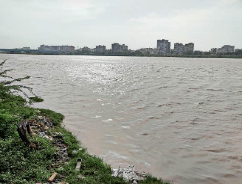 राज्य में सबसे ज्यादा 464 मिमी बारिश द. गुजरात में, 6 जिलों में सूरत दूसरे नंबर पर गुजरात,Gujarat - Dainik Bhaskar