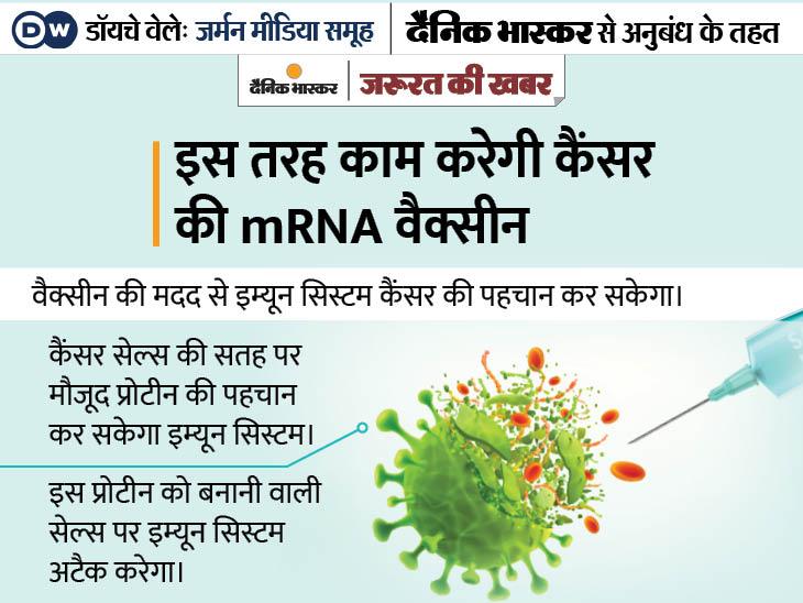 कैंसर से भी बचाएगी कोरोना वाली mRNA वैक्सीन की तकनीक, अमेरिका ने सेना को जैविक हमलों से बचाने के लिए बनवाई थी ये वैक्सीन|ज़रुरत की खबर,Zaroorat ki Khabar - Dainik Bhaskar