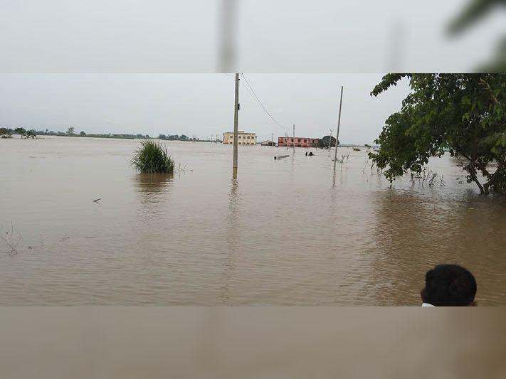 कमजोर पड़ा मानसून, 15 अगस्त तक गंडक में उफान के आसार नहीं, नेपाल में थमी बारिश गोपालगंज,Gopalganj - Dainik Bhaskar