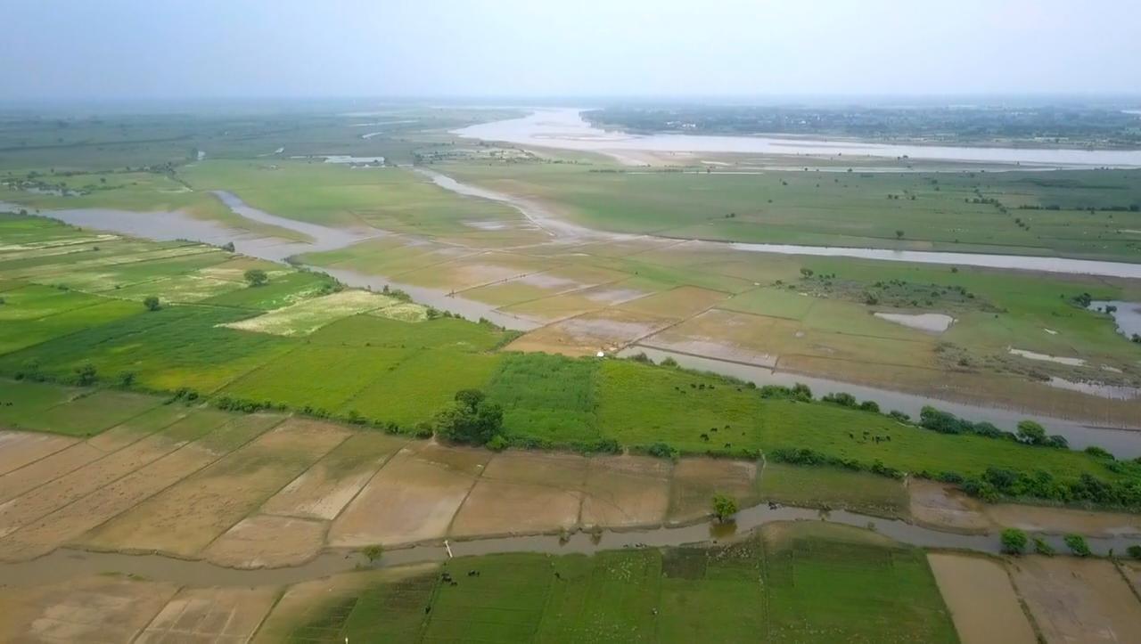 गांव सुनरख के पास 130 हेक्टेयर भूमि पर वन विभाग द्वारा भगवान श्रीकृष्ण की प्रिय प्रजातियों के 76875 पौधों का वृक्षारोपण किया जाएगा