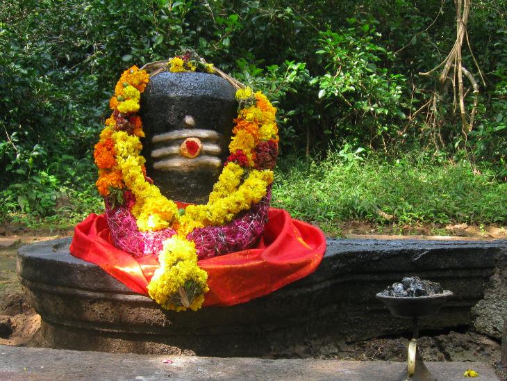 महामारी के संक्रमण से बचने के लिए घर पर शिवलिंग स्थापना और पूजा से भी मिलेगा पूरा फल धर्म,Dharm - Dainik Bhaskar
