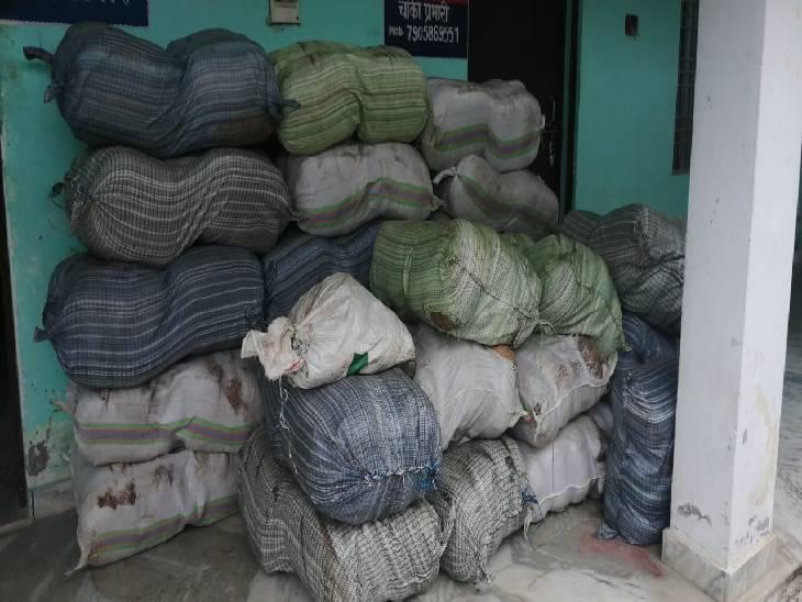 मेरठ एसटीएफ ने बताया कि ये गांजा यूपी के कानपुर, मेरठ और आगरा में भी सप्लाई होती थी। - Dainik Bhaskar