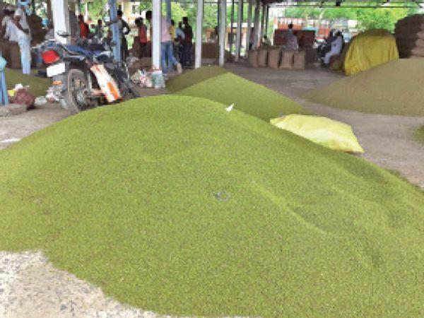 किसानों को भेजे गए मैसेज, पोर्टल अपडेट का हवाला देकर 15 दिन तक बंद रखी खरीदी होशंगाबाद,Hoshangabad - Dainik Bhaskar