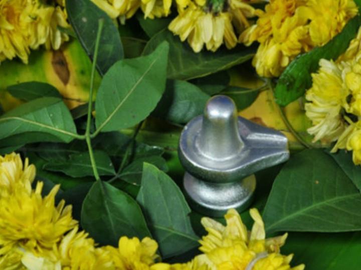 सावन माह 22 अगस्त तक, पारद शिवलिंग की पूजा करने से दूर होते हैं नकारात्मक विचार|धर्म,Dharm - Dainik Bhaskar