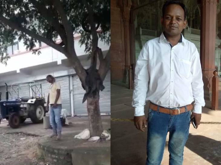 MP के सिंगरौली में गले में फंदा बांध पेड़ से कूद गया युवक, मौत से पहले कहा- पत्नी की बेवफाई और दोस्तों से तंग आ गया हूं|सतना,Satna - Dainik Bhaskar