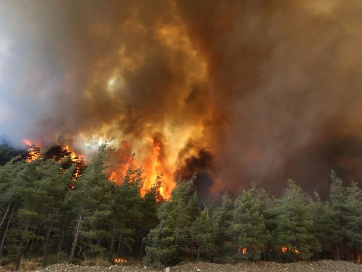 तेज हवा की वजह से आग पर कापू पाने में दिक्कत आ रही है। कई जगह आग की लपटे कई सौ मीटर ऊंची उठ रही हैं।