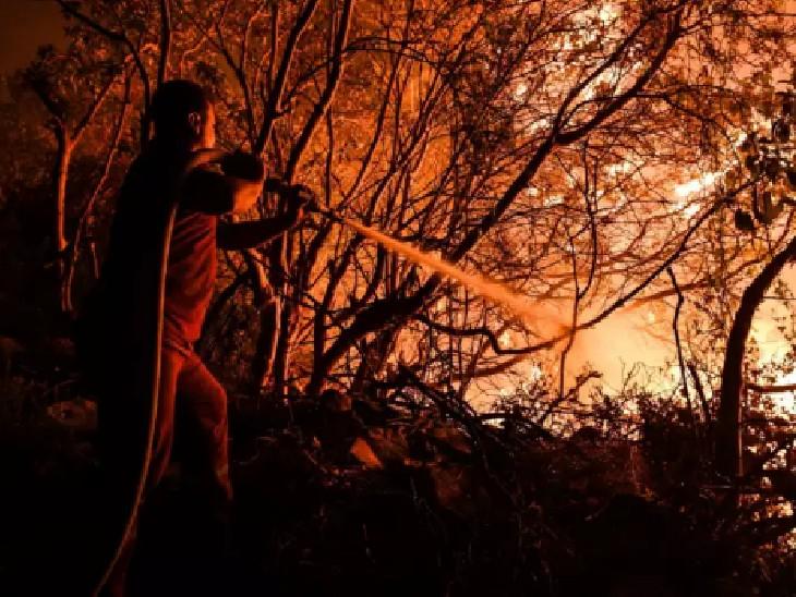 आग लगने की कई खौफनाक तस्वीरें सामने आई हैं। सोशल मीडिया में लोग इन्हें जमकर शेयर कर रहे हैं।