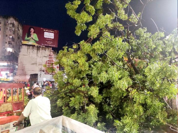 पेड़ का एक बड़ा हिस्सा मुख्य सड़क पर गिर गया।