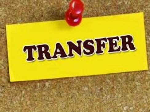 5 आईएएस के ट्रांसफर; सुबोध अग्रवाल के बाद पीके गोयल भी जूनियर सीएस के अंडर काम करेंगे|जयपुर,Jaipur - Dainik Bhaskar