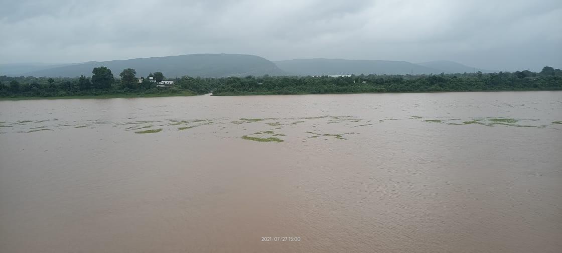 सुबह से रिमझिम बारिश जारी, 24 घंटे में एक फीट बढ़ा तवा डैम का जलस्तर, 4.2 MM औसत बारिश होशंगाबाद,Hoshangabad - Dainik Bhaskar