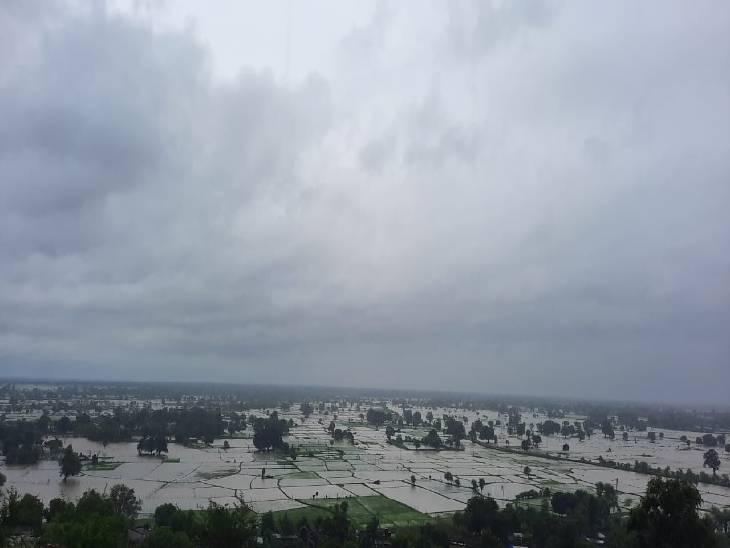 रीवा जिले की आधा दर्जन नदियां चल रही खतरे के निशान के ऊपर, बारिश न हुई तो शाम तक हालात होंगे सही|रीवा,Rewa - Dainik Bhaskar