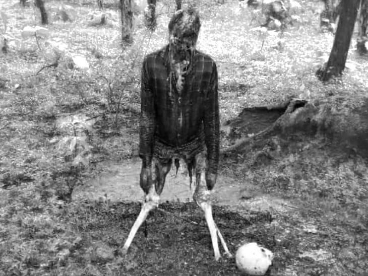 एक ही फंदे पर फांसी लगाई, शरीर का ज्यादातर हिस्सा जानवर खा गए; दोनों शादीशुदा थे|छतरपुर (मध्य प्रदेश),Chhatarpur (MP) - Dainik Bhaskar