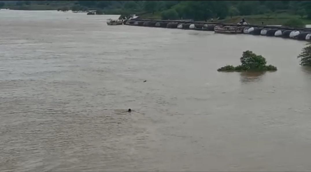 खतरे के निशान से ढाई मीटर नीचे है जलस्तर, डीएम ने जारी किया अलर्ट, युवा कर रहे चंबल नदी में स्टंट|आगरा,Agra - Dainik Bhaskar