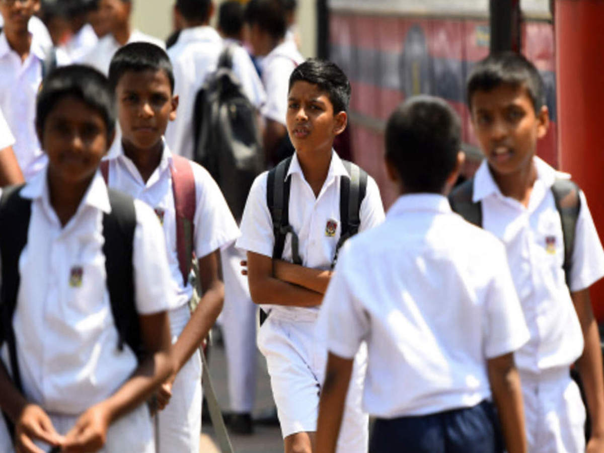 बिलासपुर के 30% से अधिक स्टुडेंट्स ने स्कोर किए 90% मार्क्स, ब्रिलियंट पब्लिक स्कूल के ध्रुव के सबसे अधिक अंक|बिलासपुर,Bilaspur - Dainik Bhaskar