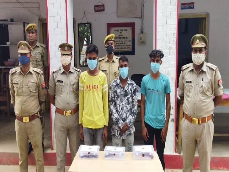 पुलिस ने 6 बदमाशों को घेरा तो मकान में छिपकर करने लगे फायरिंग; जवाबी कार्रवाई में 3 गिरफ्तार, 3 अंधेरे का फायदा उठाकर भाग निकले|सुलतानपुर,Sultanpur - Dainik Bhaskar