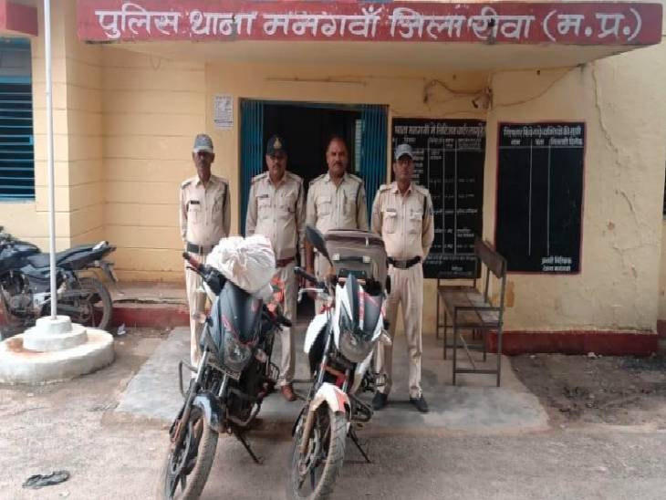 Rewa police caught 3 accused with 20 kg ganja    Rewa police caught 3 accused with 20 kg of ganja, seized narcotic worth 2 lakh, crime registered against smuggler Gyanu in two states