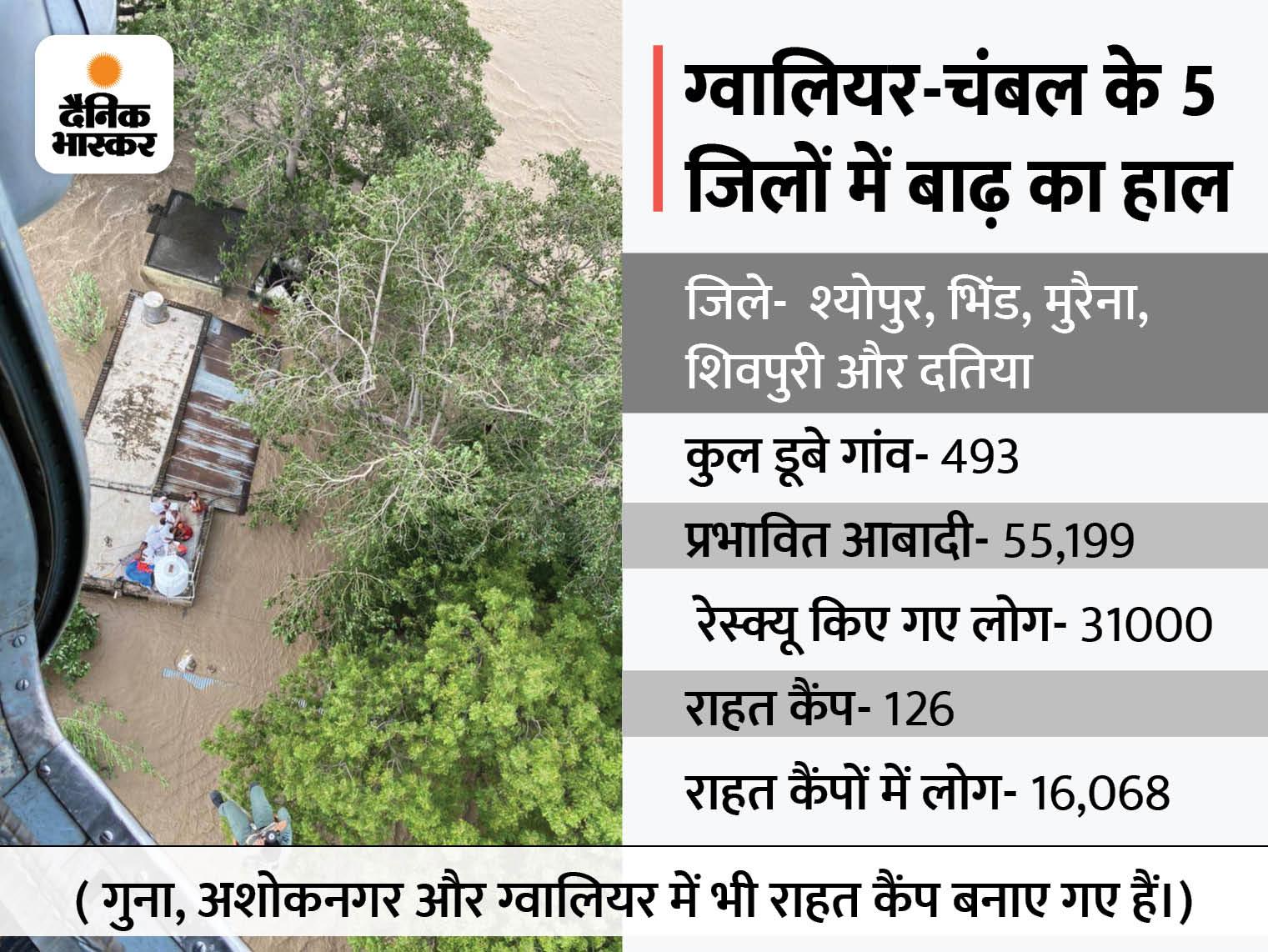 सिंध का पानी उतरने से शिवपुरी में राहत, अब पूरा फोकस भिंड-मुरैना पर; 5 दिन में 493 गांवों से 31 हजार को रेस्क्यू किया, 126 राहत कैंप में 16 हजार लोग|मध्य प्रदेश,Madhya Pradesh - Dainik Bhaskar