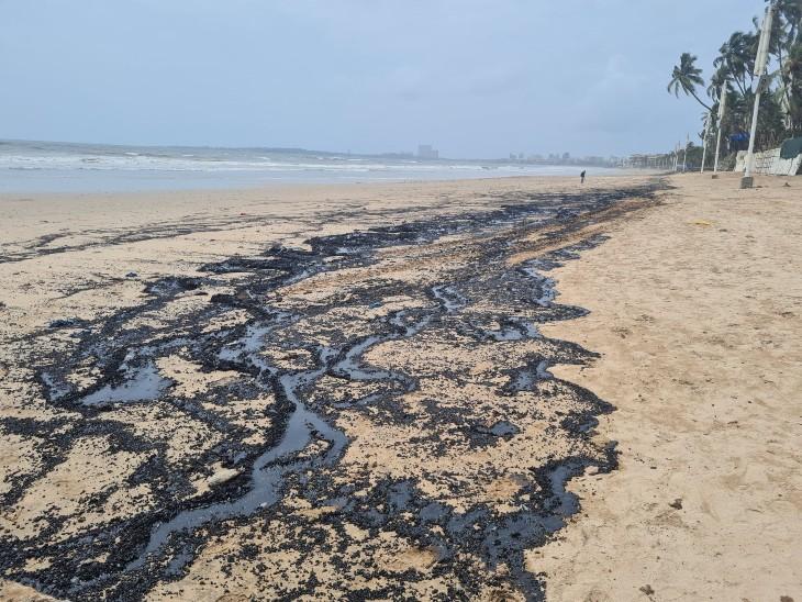 समुद्र किनारे इसी तरह से काली हुई रेत तकरीबन दो से तीन किलीमीटर दूर तक देखी जा सकती है। - Dainik Bhaskar