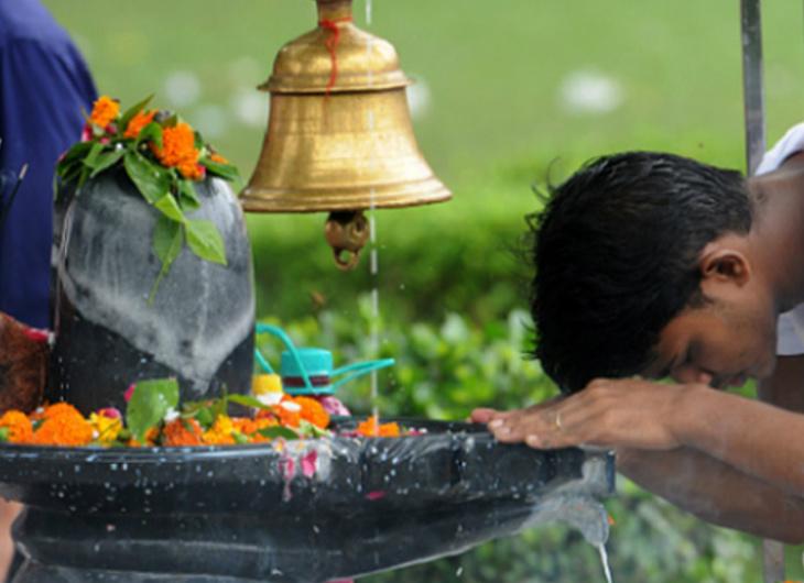 रविपुष्य और सर्वार्थसिद्धि योग में मनेगी हरियाली अमावस्या, किसानों के लिए भी खास है ये पर्व|धर्म,Dharm - Dainik Bhaskar