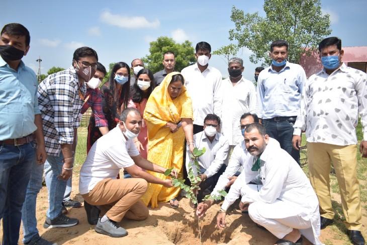 स्कूल परिसर और पार्को में पौधे लगाकर की अभियान की शुरूआत, पहले दिन 50 पौधे लगाए जयपुर,Jaipur - Dainik Bhaskar