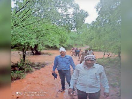खंडार | उबड़ खाबड़ रास्तों से गुजरती वन विभाग की टीम। - Dainik Bhaskar