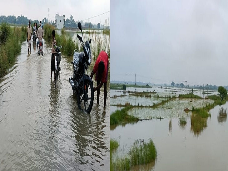 बक्सर में बाढ़। - Dainik Bhaskar