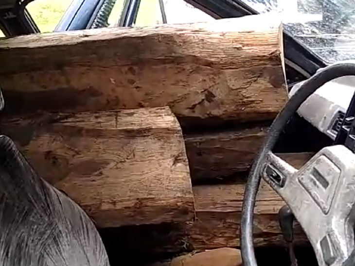 इस तरह कार में रखी थी लकड़ी।