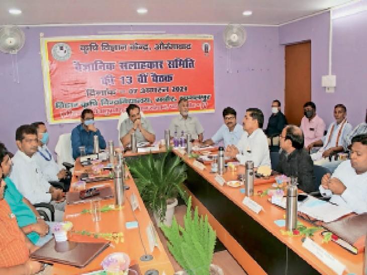 वैज्ञानिक सलाहकार समिति की बैठक में मौजूद अधिकारी - Dainik Bhaskar