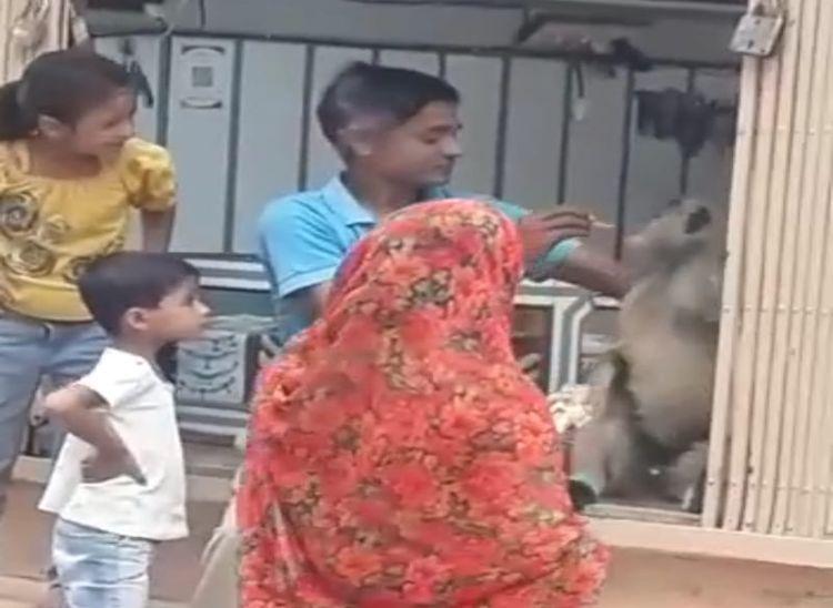 सुनार की दुकान में बंदर को बिस्किट खिलाता मांगीलाल।