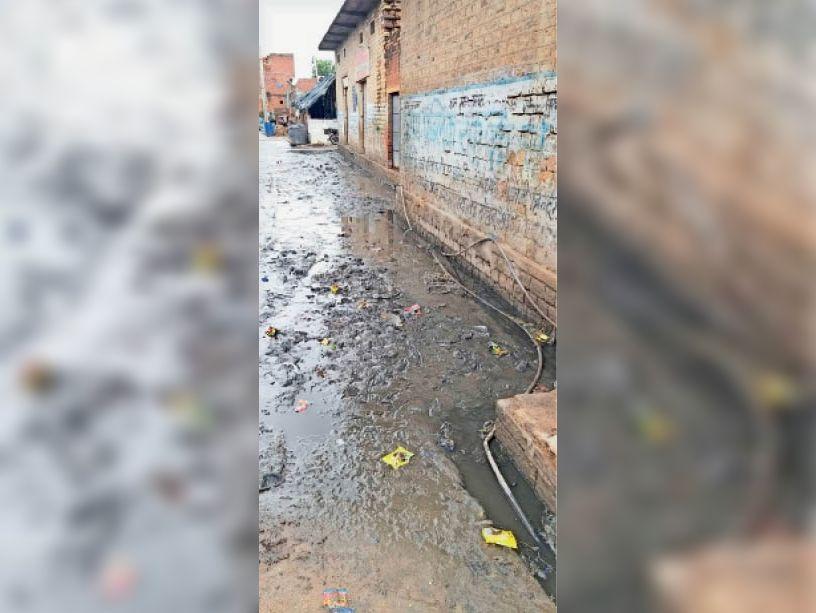 गाेहद के वार्ड 4 में नाले की सफाई नहीं होने से रोड पर जमा कीचड़ । - Dainik Bhaskar