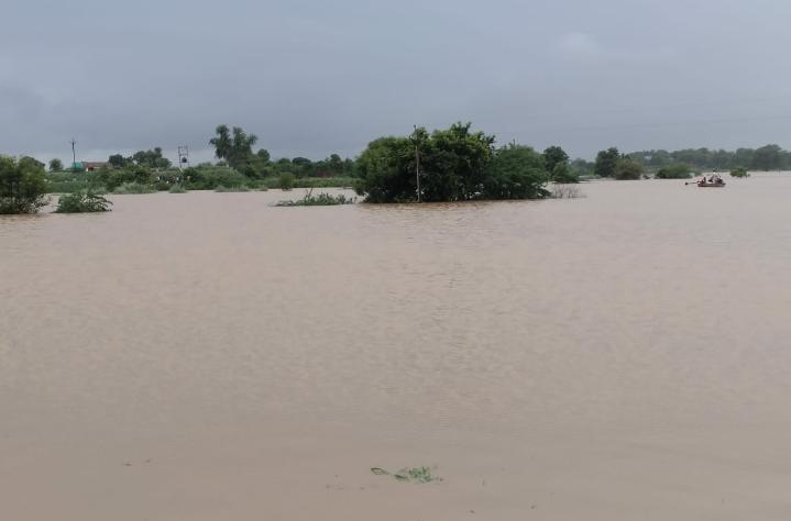 चंबल नदी अब भी खतरे के निशाने से ऊपर बह रही है। - Dainik Bhaskar