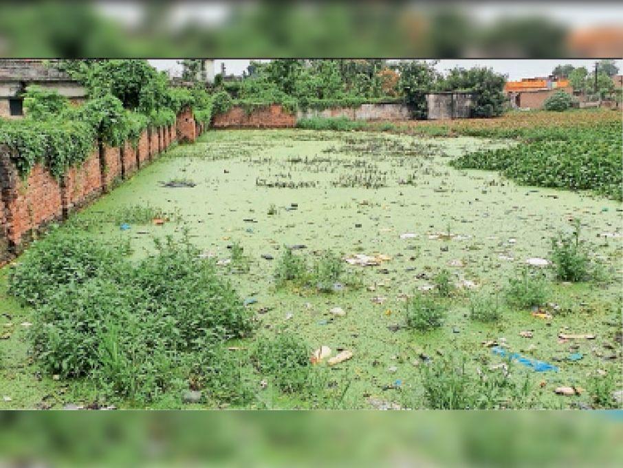जलजमाव से लोगो के घरों में घुसा पानी। - Dainik Bhaskar