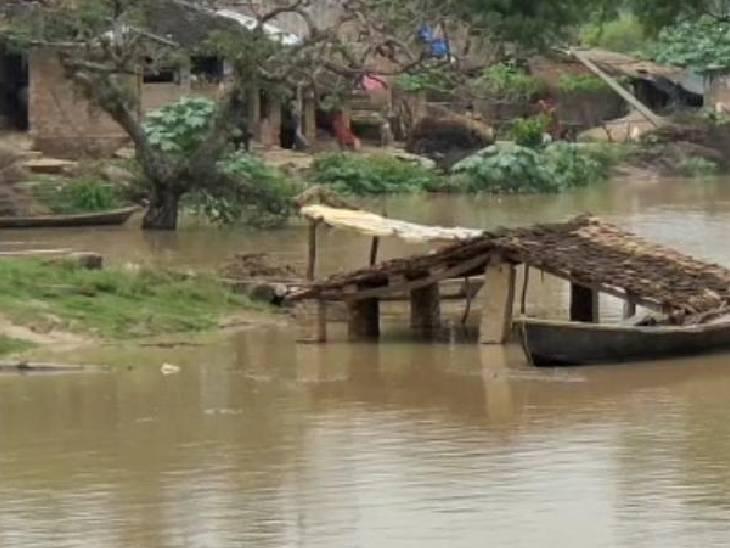 18 लाख क्यूसेक पानी यमुना में छोड़ा गया, किसानों की सैकड़ों बीघा फसल बर्बाद कौशांबी,Kaushambi - Dainik Bhaskar