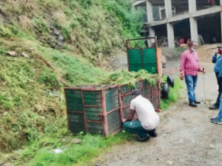 तेंदुए को पकड़ने के लिए वन विभाग ने लगाया पिंजरा। - Dainik Bhaskar
