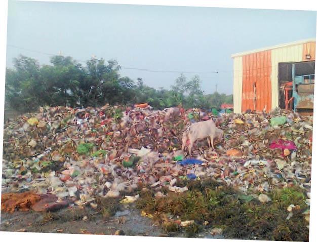 मेला मैदान स्थित कचरा सेंटर में लगा कचरे का ढेर। - Dainik Bhaskar