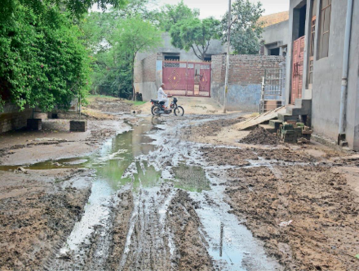 सीवर लाइन न होने से कीचड़ से बदहाल सुनारिया की एक गली। - Dainik Bhaskar