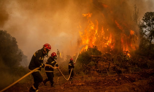 According to reports, 93 thousand hectares of forest have been burnt so far.  This is sure to have a bad effect on Greece's ecosystem.
